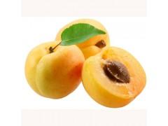 【悦果汇】金太阳新鲜大水杏 80元约8斤