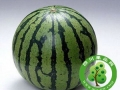 4种夏日水果保鲜的妙方法