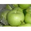 新鲜水果 四川盐源早熟青苹果