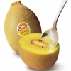优质黄心猕猴桃