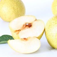 【悦果汇】新鲜水果 贡梨 新鲜梨子 3.8元500g约两个
