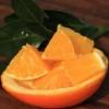 供应秭归伦晚脐橙