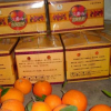 雷波脐橙原产地供应