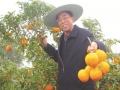退休厅官返乡耕耘八年 造出亿元柑橘产业园