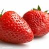 求购优质草莓