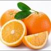 求购脐橙1000吨
