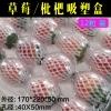 供应草莓枇杷吸塑盒 水果专用泡沫箱 草莓快递专用包装