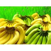 供应小勐拉皇家点击开户香蕉