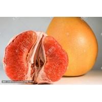 买点红心柚