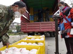 眉山100余吨晚熟柑橘销往东南亚